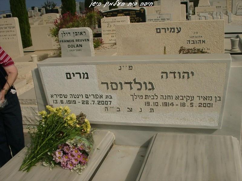goldwaser_yehuda_miriam